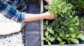 10 easy ways to make your new digs greener
